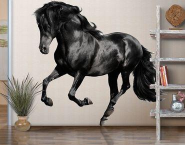 Adesivo murale no.649 Arabian Stallion