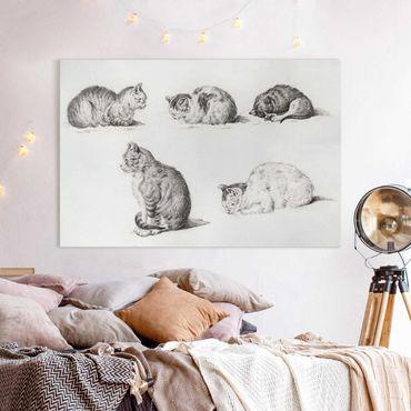 Stampa su tela - Vintage Disegno Cat I - Orizzontale 2:3