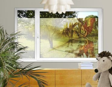 Decorazione per finestre Reflection Of Squirricorn