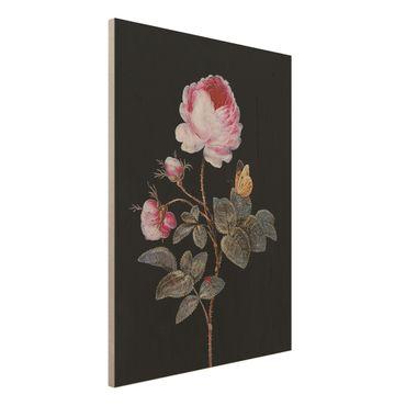 Stampa su legno - Barbara Regina Dietzsch - The Hundred-Rose - Verticale 4:3