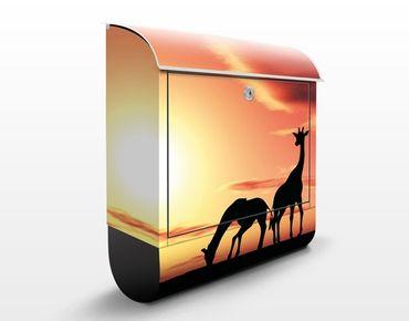 Cassetta postale African Life 39x46x13cm