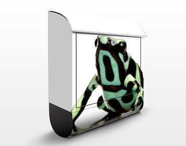 Cassetta postale Zebra Frog 39x46x13cm