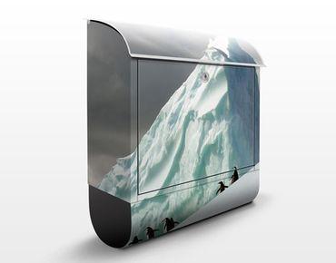 Cassetta postale Arctic Penguins 39x46x13cm