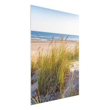 Stampa su Forex - Beach Dune Al Mare - Verticale 4:3