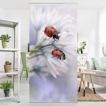 Tenda a pannello - Ladybird Couple - 250x120cm