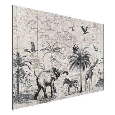 Stampa su alluminio spazzolato - Vintage Collage - Exotic Mappa - Orizzontale 2:3