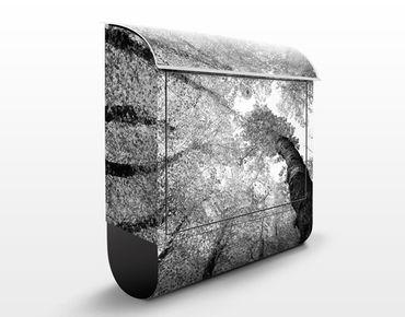 Cassetta postale Trees Of Life II 39x46x13cm