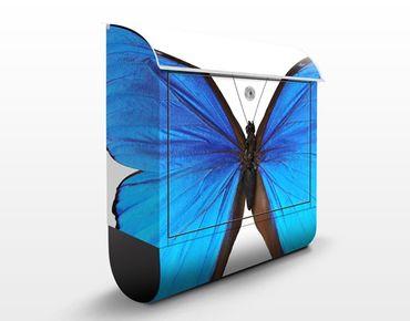 Cassetta postale Blue Morpho 39x46x13cm