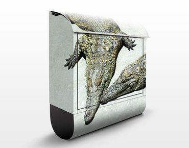 Cassetta postale Crocodile Romance 39x46x13cm