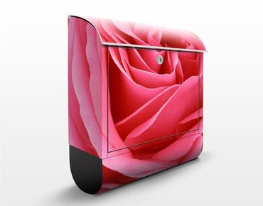 Cassetta postale Lustful Pink Rose 39x46x13cm