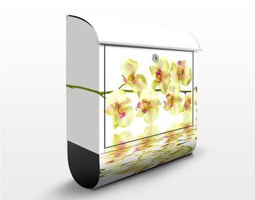 Cassetta postale design Dreamy Orchid Waters 39x46x13cm