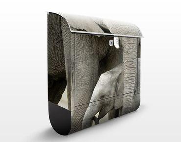 Cassetta postale Elephants in Love 39x46x13cm