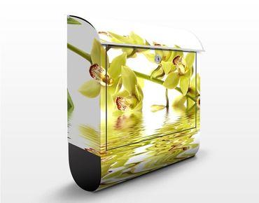 Cassetta postale design Elegant Orchid Waters 39x46x13cm