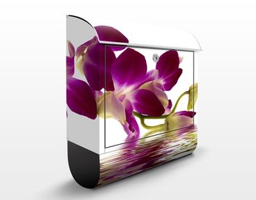 Cassetta postale Pink Orchid Waters 39x46x13cm