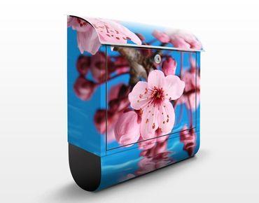 Cassetta postale Cherry Blossom 39x46x13cm