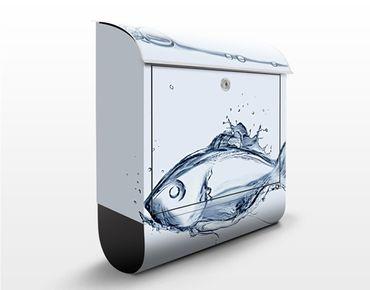 Cassetta postale Liquid Silver Fish 39x46x13cm
