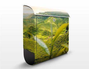 Cassetta postale Teagarden 39x46x13cm