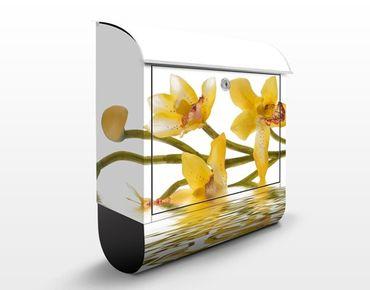 Cassetta postale design Saffron Orchid Waters 39x46x13cm