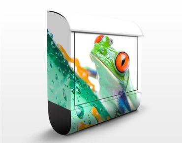Cassetta postale Frog 39x46x13cm