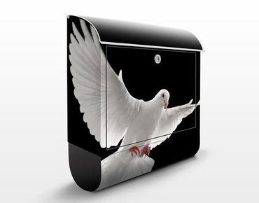 Cassetta postale Dove Of Peace 39x46x13cm