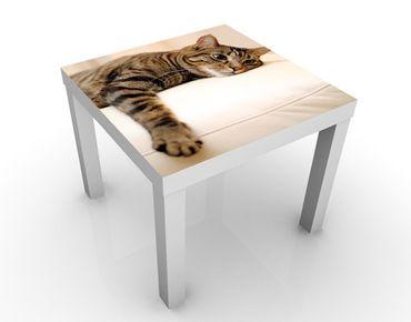 Tavolino design Cat Chill Out