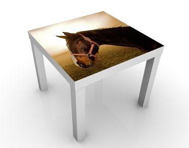 Tavolino design Early Horse