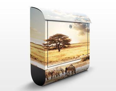 Cassetta postale The Life Of The Zebras 39x46x13cm
