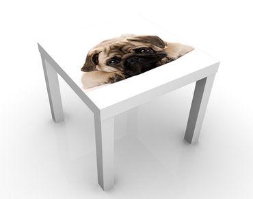 Tavolino design Cuddly Pug
