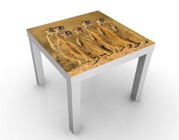 Tavolino design Meerkat Family