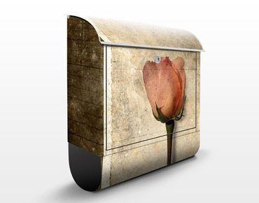 Cassetta postale Inner Rose 39x46x13cm
