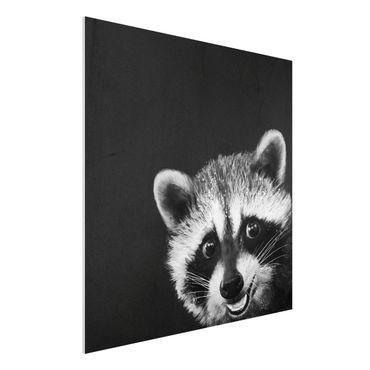Stampa su Forex - Illustrazione Raccoon Monochrome Pittura - Quadrato 1:1