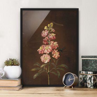 Poster con cornice - Barbara Regina Dietzsch - Un Pink Garden Levkkoje - Verticale 4:3