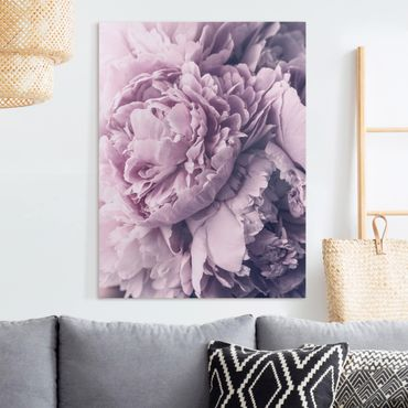 Quadri su tela - Viola Peony Blossoms