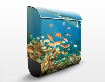 Cassetta postale Coral Reef 39x46x13cm