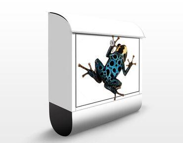 Cassetta postale Poison Dart Frog 39x46x13cm