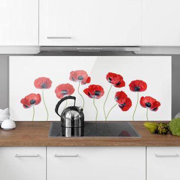 Paraschizzi in vetro - Ladybug Poppies - Panoramico