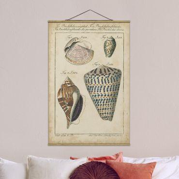 Foto su tessuto da parete con bastone - Vintage Conch Disegno modella variopinto - Verticale 3:2