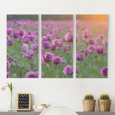 Stampa su tela 3 parti - Purple Poppy Flower Meadow In Spring - Verticale 2:1