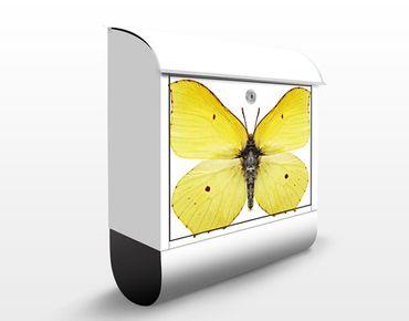 Cassetta postale Brimstone Butterfly 39x46x13cm