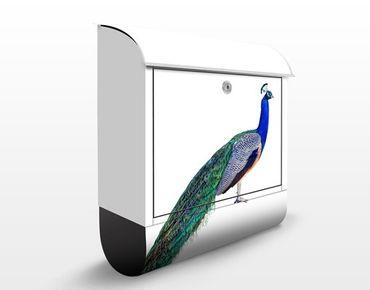 Cassetta postale Peacock 39x46x13cm