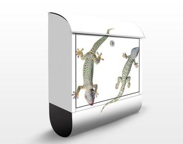 Cassetta postale Nosey Geckos 39x46x13cm