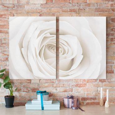 Stampa su tela 2 parti - Pretty White Rose - Verticale 4:3