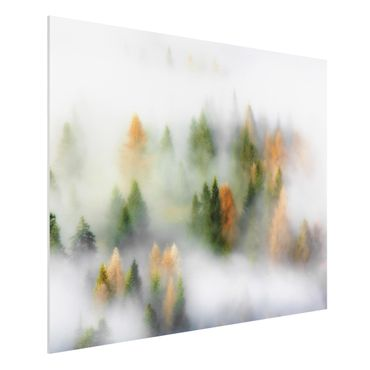 Quadro in forex - Nube di foresta in autunno - Orizzontale 4:3