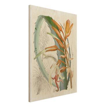 Stampa su legno - Illustrazione Vintage Tropical Flowers I - Verticale 4:3