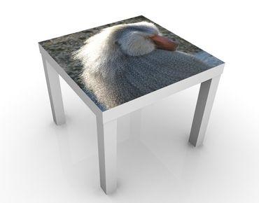 Tavolino design no.UL1026 Baboon