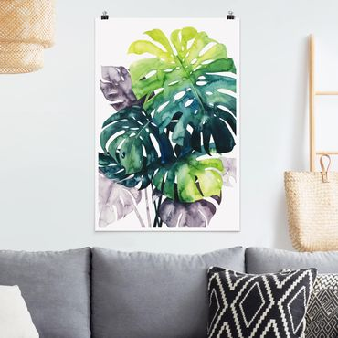 Poster - Exotic Foliage - Monstera - Verticale 3:2