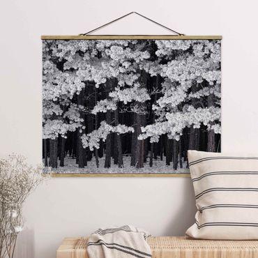 Foto su tessuto da parete con bastone - Foresta Con brina in Austria - Orizzontale 3:4
