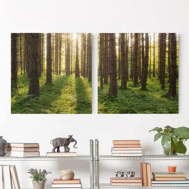 Stampa su tela 2 parti - Sun Rays In Green Forest - Quadrato 1:1