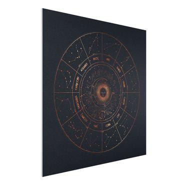 Stampa su Forex - Astrologia i 12 segni dello zodiaco Blue Gold - Quadrato 1:1