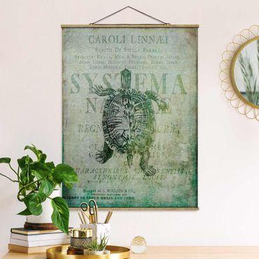 Foto su tessuto da parete con bastone - Vintage collage - Antique Turtle - Verticale 4:3